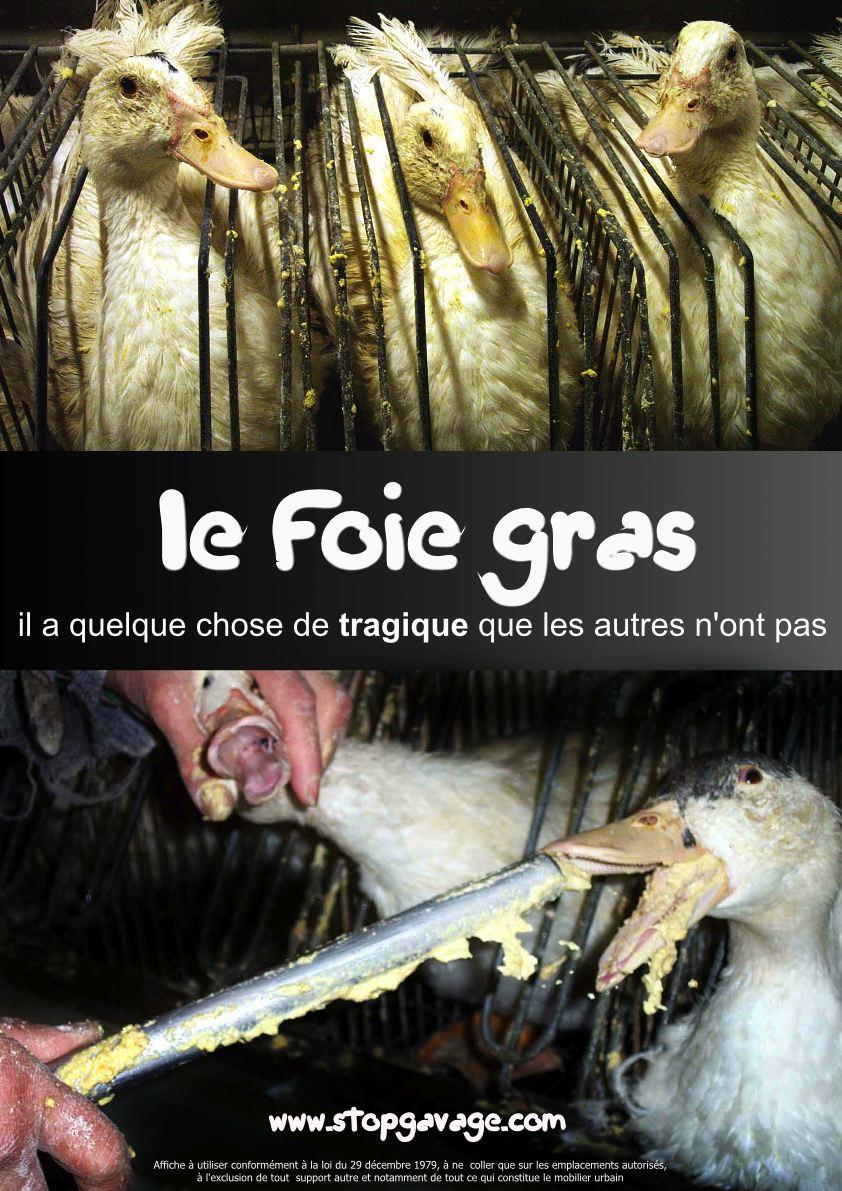 foie_grass