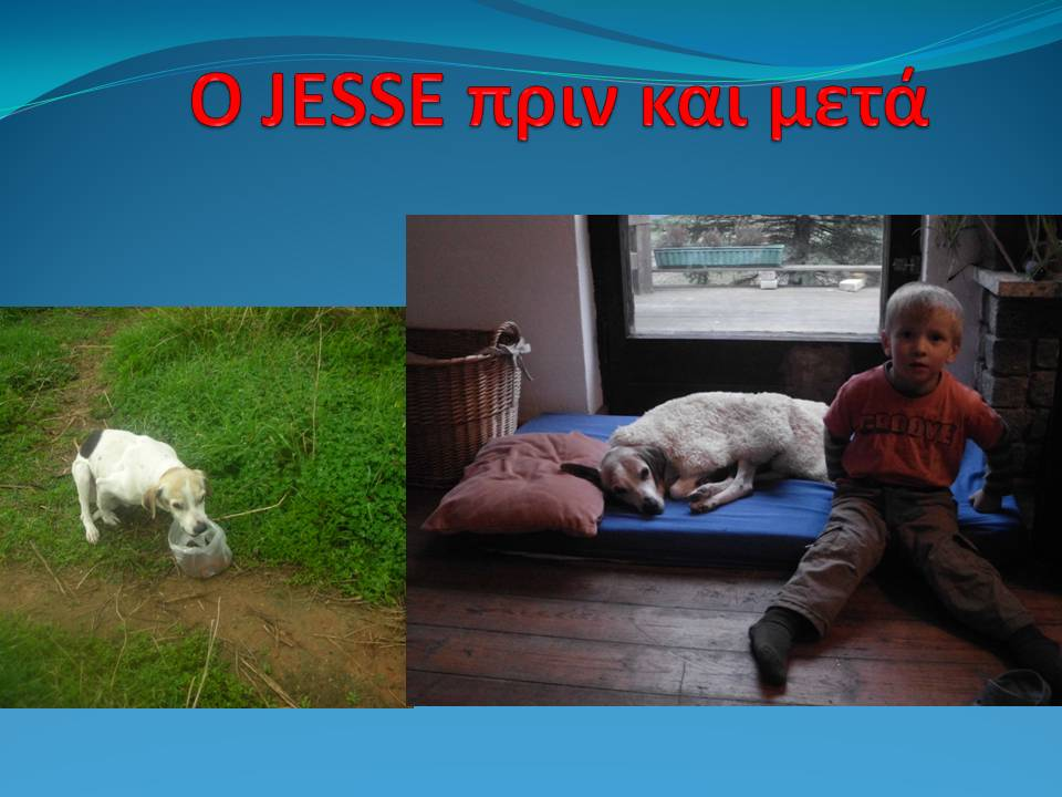 O_JESSE___